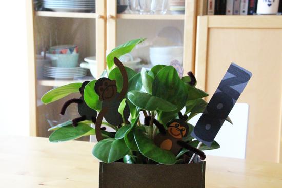 binedoro Blog, DIY, Geldgeschenk, Geschenkverpackung, wrapping, Tonpapier, Gutschein
