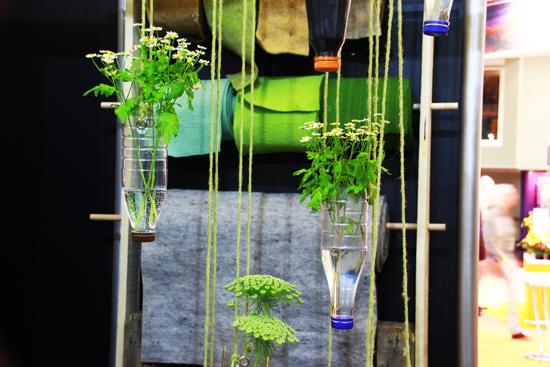 binedoro Blog, IPM ESSEN 2017, Internationale Pflanzenmesse, Blumen, Pflanzen, Sukkulenten, Urban Jungle