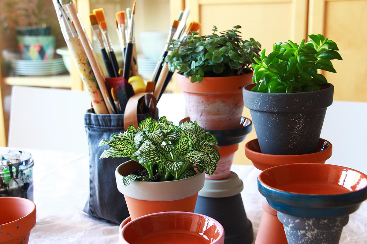 Sukkulenten Türmchen DIY Terracotta binedoro