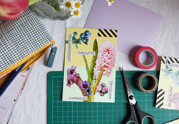 binedoro Blog, DIY, Papeterie, Grußkarten, Schnittblumen, Bestimmungskarten, Pflanzenkunde,